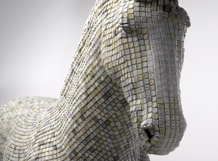 toetsenbord-paard1