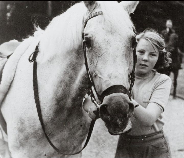 paard en beatrix
