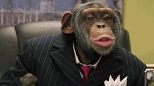 chimpPolitician (1)