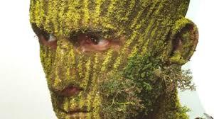 boomgezicht